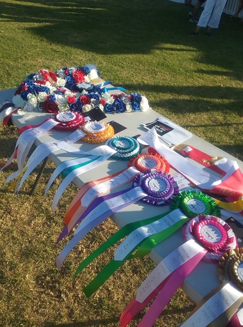Winning at Eventing in the Park!